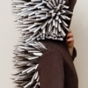 hedgehog costume idea