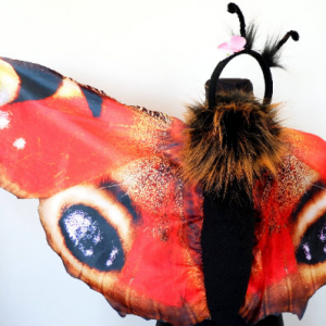 butterfly costume for adults