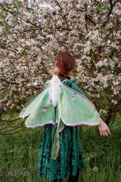 luna moth wings