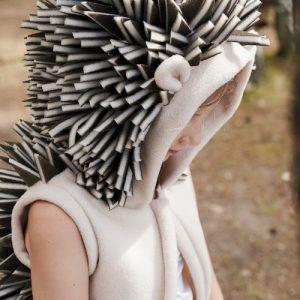 hedgehog dress up
