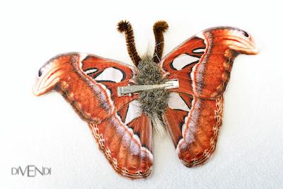 atlas moth costume