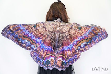 witch moth wings