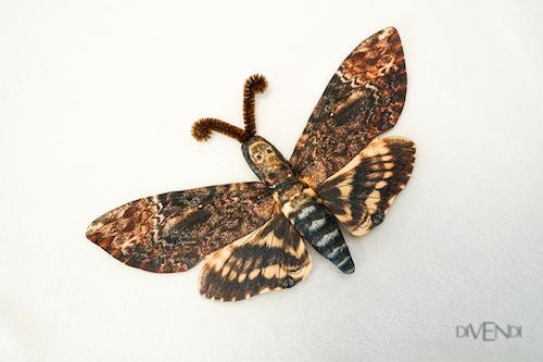 death moth brooch