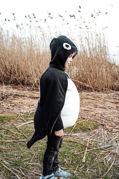penguin pretend play